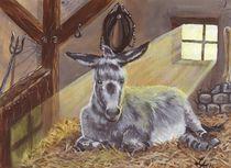 Der alte Esel by lona-azur