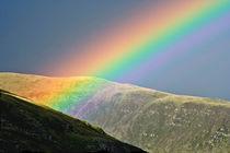 Lunar Rainbow von Wayne Molyneux