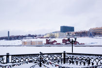 embankment of a city pond in the winter, Russia von yulia-dubovikova