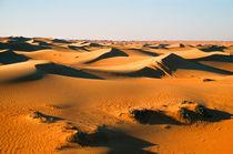 Evening Dunes by Graham Prentice