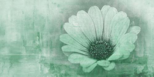 Greenflower