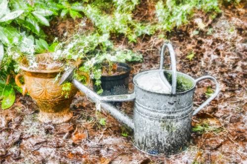 Wateringcan