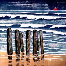 Nordseewellen von Dieter Tautz