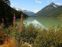 Duffey Lake von Jutta Ploessner