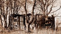 Ruine von tinadefortunata