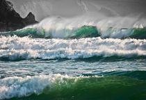 Wild waves von Christine Fitzgerald