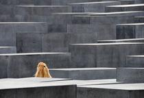 Berlin Holocaust-Mahnmal by Matthias Hauser