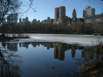 Central Park, New York by Azzurra Di Pietro