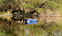 Boat  at Muckross Lake by Barbara Walsh