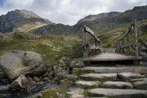 Pathway to Tryfan von Wayne Molyneux