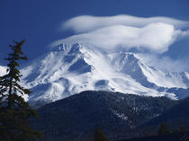 Mt. Shasta Morning by Christi Ann Kuhner