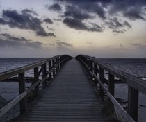The Long Bridge  by Sarah Osterman