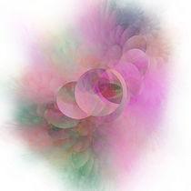 Lavender von Benedikt Amrhein