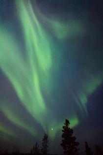 Nordlichtmittextur