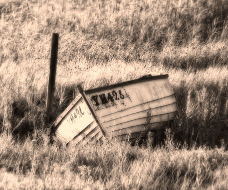 Boat-in-grass