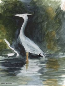 Watercolor of a Grey Heron by Sandra Woods