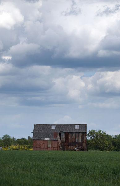 Tin-shack-4