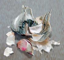Garlic von Nigel  Bangert