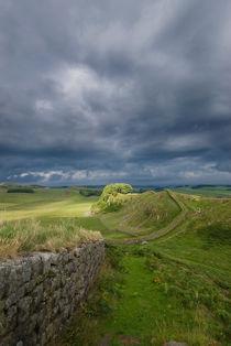 Hadrian's Wall von Nigel  Bangert