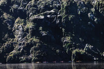Kayaking at Breimsvatnet by Simone Stibbe