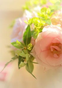 Sweet-petal