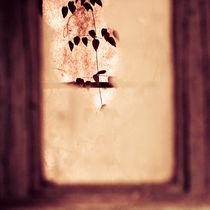 Broken window and plant von Lars Hallstrom