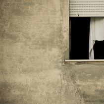 Window  by Lars Hallstrom