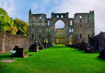 Rievaulx Abbey Ruins von tkphotography