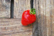 Lonly Strawberry by Josephine Brücher