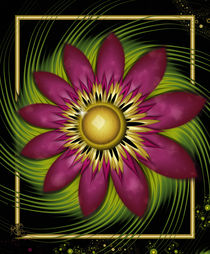 Star Flower von Karla White