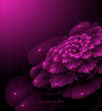 Electric Rain by Karla White