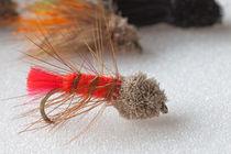 trout fly deer head nymph von Craig Lapsley