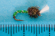 suspender buzzer trout fly by Craig Lapsley