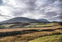 A View Over Ingleborough by sandra cockayne