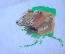 Bears of Alaska by Melissa Nowacki
