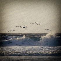 Sylt Impressions #76 by Melanie Hinz