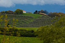toscana landscape von Lilian istrati