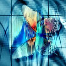 Alter Falter auf blauem Glas. von Bernd Vagt