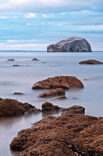 The Bass Rock by Amanda Finan