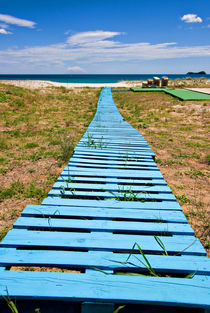 improvised boardwalk by meirion matthias