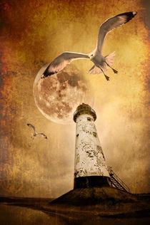 Lunar Flight von meirion matthias