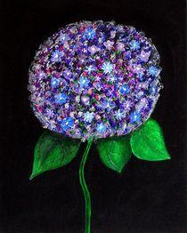 Acrylbild Hortensie by Anke Franikowski