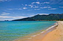 the golden beach by meirion matthias