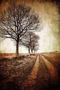 Winter-tracks