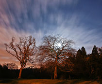 Night Sky 002 by Buster Brown Photography
