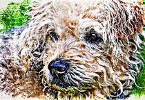 Painterly-dog-textured
