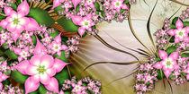Zeit der Apfelblüte von Christine Kühnel