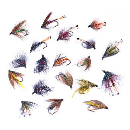 Trout-flies