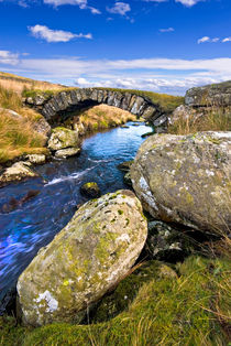 the sheep bridge by meirion matthias