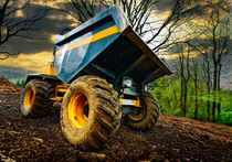 big bad dumper truck by meirion matthias